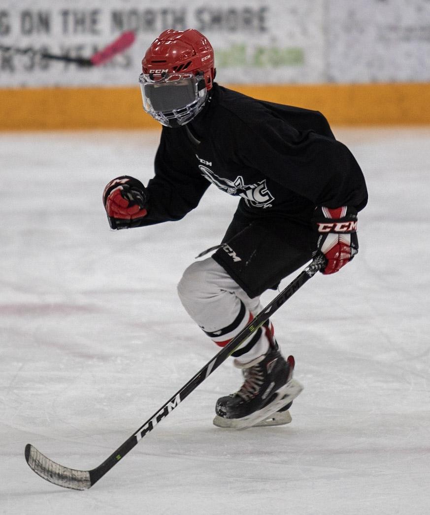 Edge work hockey 2